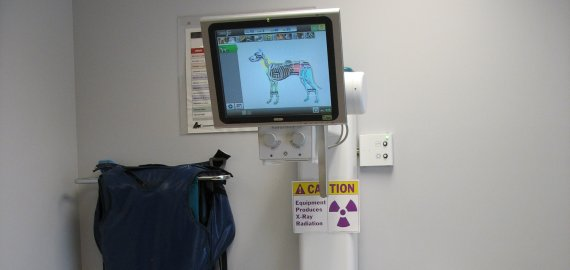 On-site radiology allows the doctors to further evaluate your pet for illness or injury.